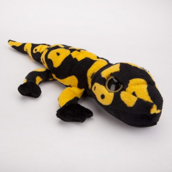 Salamandra czarno-żółta 40 cm