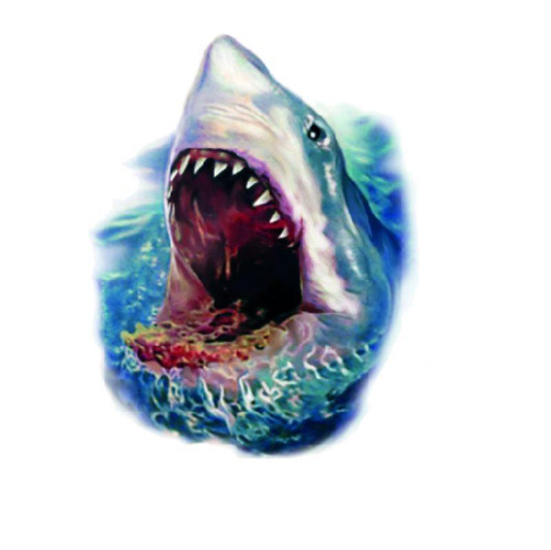 Tatuaż przyklejany rekin 15x8