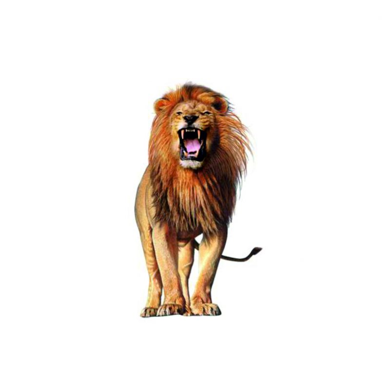 Tatuaż przyklejany lew 15x8