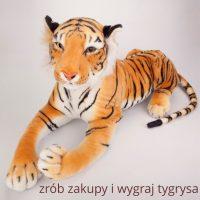 Wygraj tygrysa :)