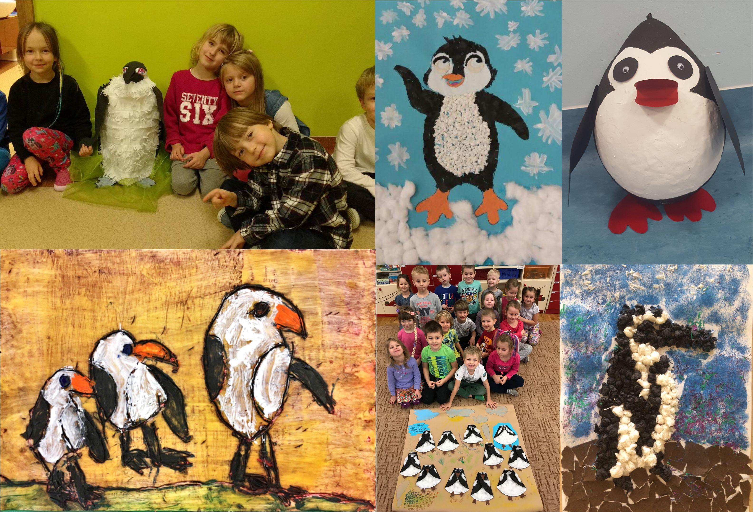 Pingwin przylądkowy z dowodem osobistym zwycięzcą konkursu!