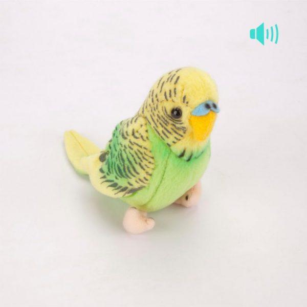 Papuga śpiewająca 12 cm
