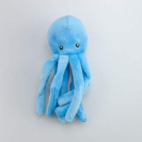 Ośmiornica niebieska