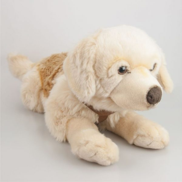 Golden Retriever 55 cm