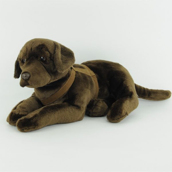 Pies labrador czekoladowy 50 cm
