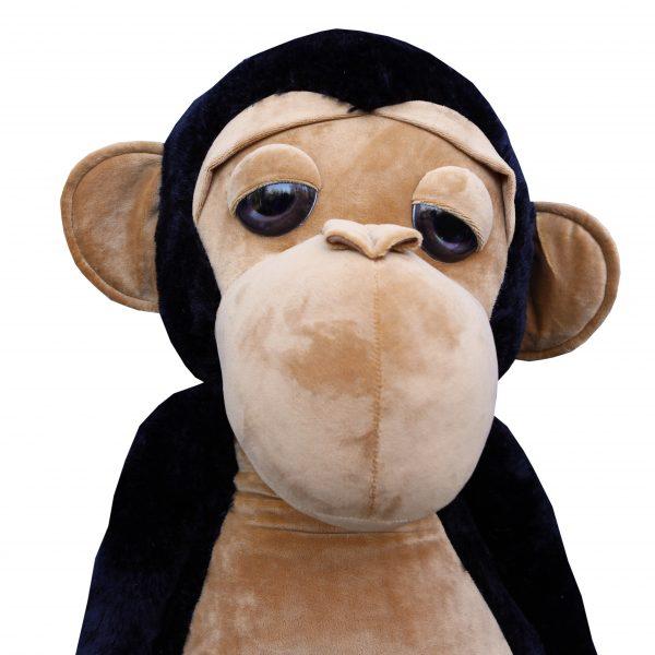Małpa XXL