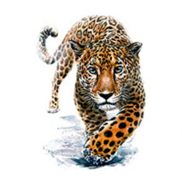 Tatuaż jaguar