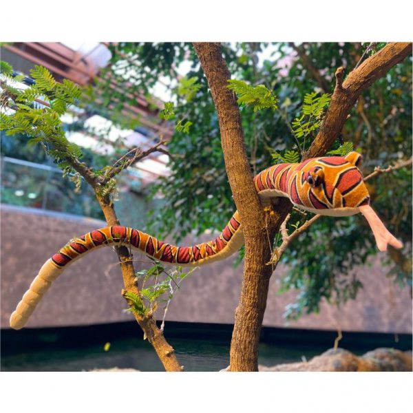 Wąż bordowy 137 cm