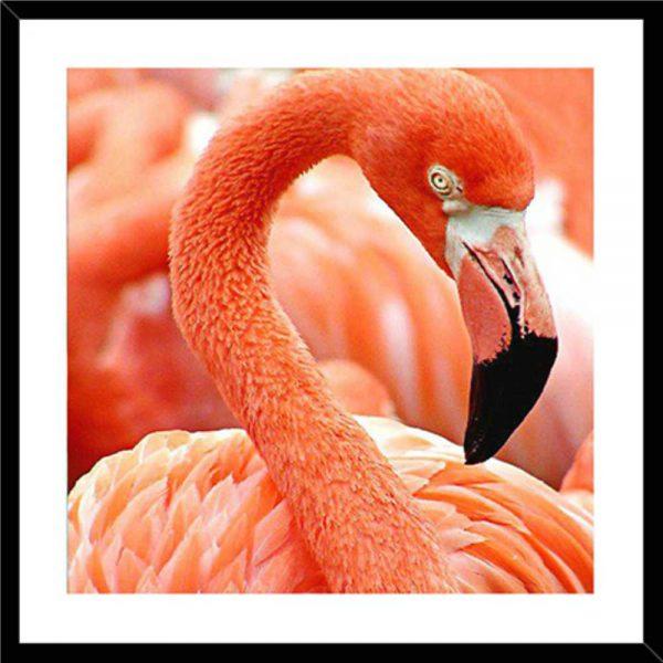 Obraz z flamingiem